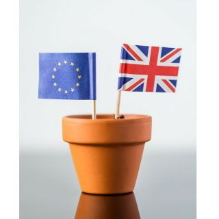 What does BREXIT mean for mortgages?